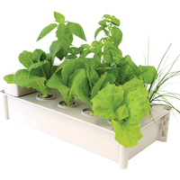 GP0300 Salad Green Grower Hydroponic 900